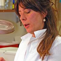 Martina Bazzaro, Ph.D.